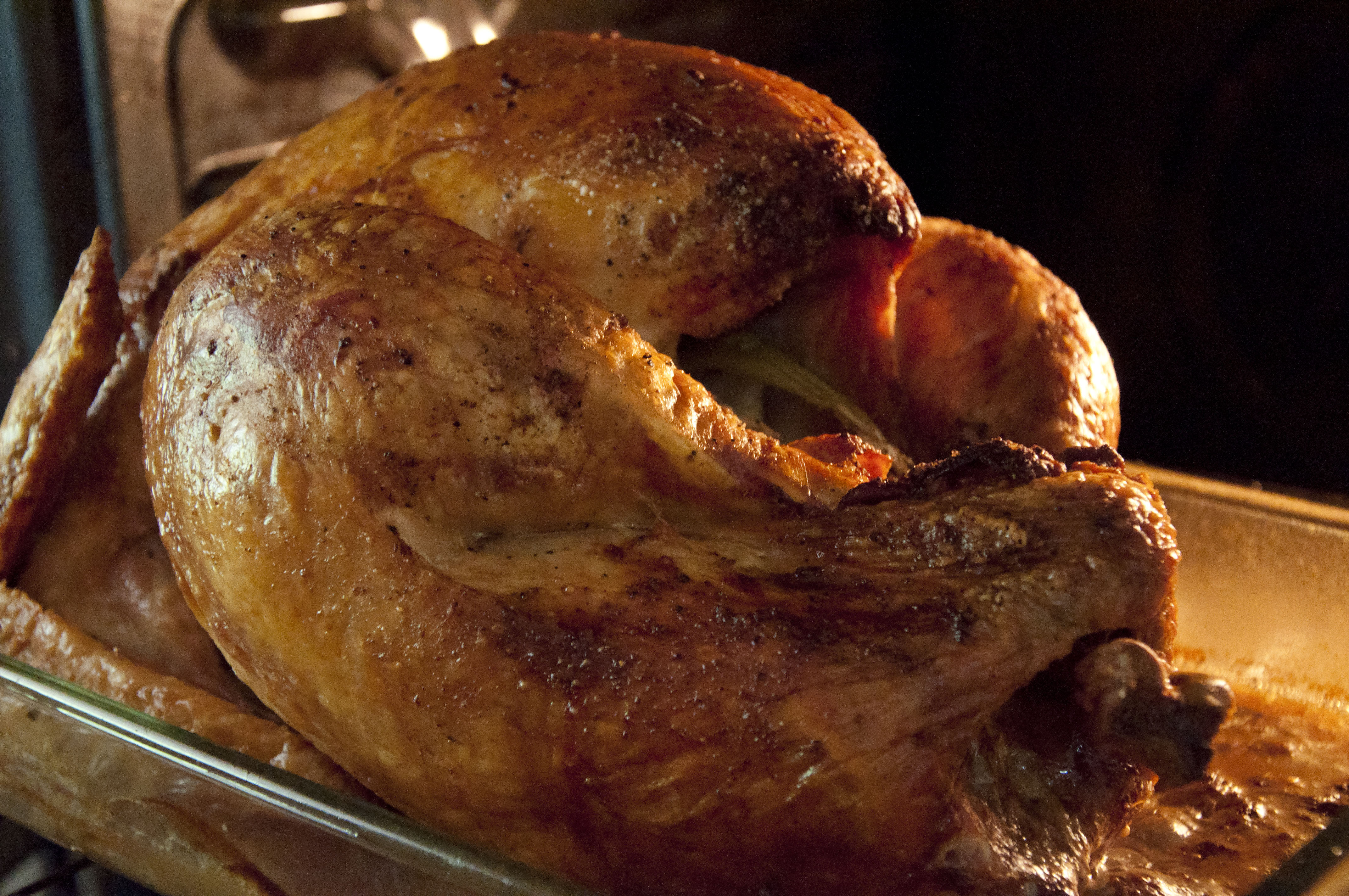 a thanksgiving turkey in the oven